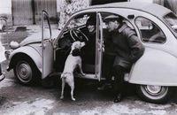 Gombrowicz e un cane
